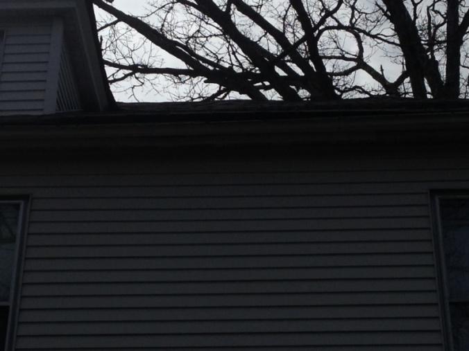 Roof edge-image-2508880719.jpg
