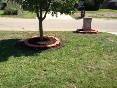 New landscaping need plant ideas..-image-2544108989.jpg