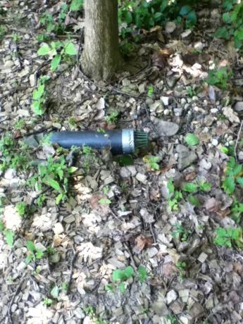 Drain pipe vermin-image-2618093838.jpg