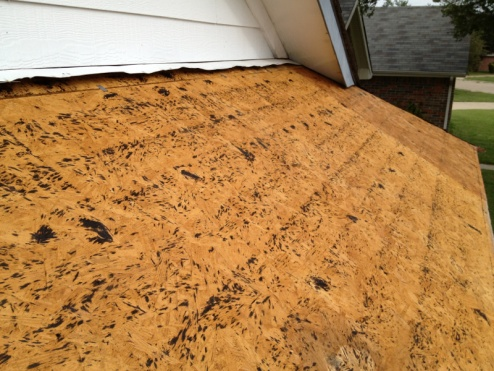 How to determine if OSB decking should be replaced-image-2806370304.jpg
