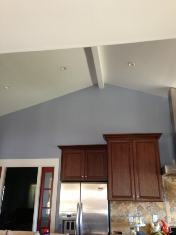 Vaulted Ceiling Insulation-image-3020443927.jpg