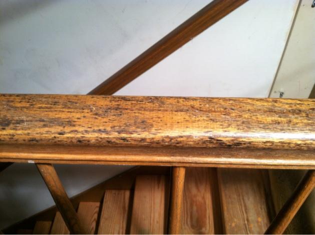 Mold on railing-image-30438227.jpg