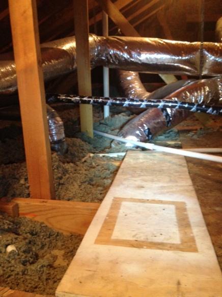 Options for my attic-image-3046393006.jpg