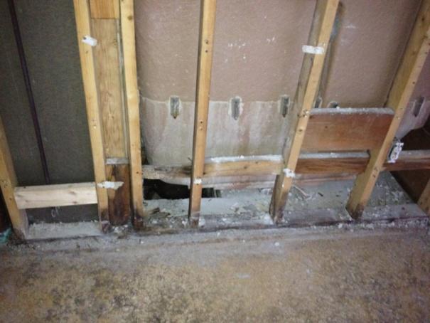 Looks like I need to rebuild a wall..-image-313035703.jpg