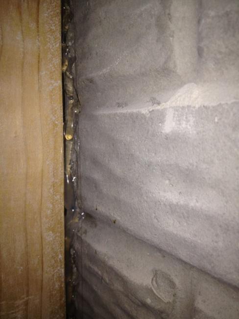 Water in basement-image-3156961796.jpg