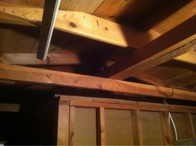 shed remodel-image-3305467912.jpg