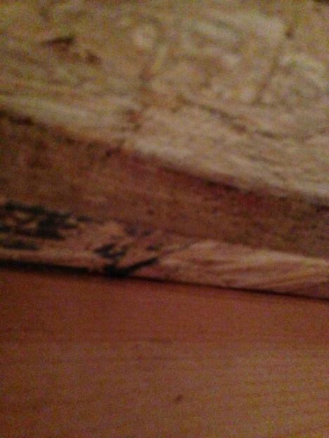 Bouncy Floor-image-3328766276.jpg