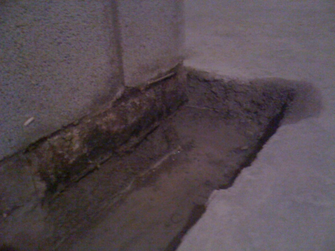 Humid but not wet basement...is dryloc enough?-image-3331668988.jpg