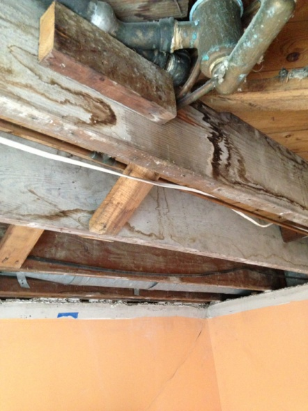 Water stained floor joists-image-341901654.jpg