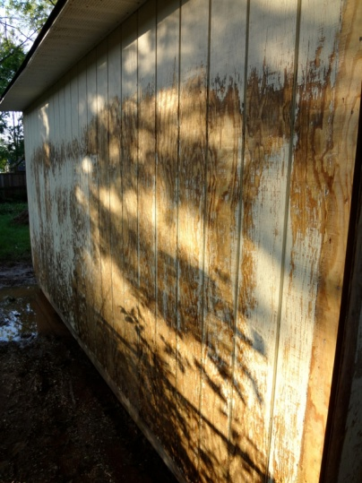 Painting a shed-image-3452674710.jpg
