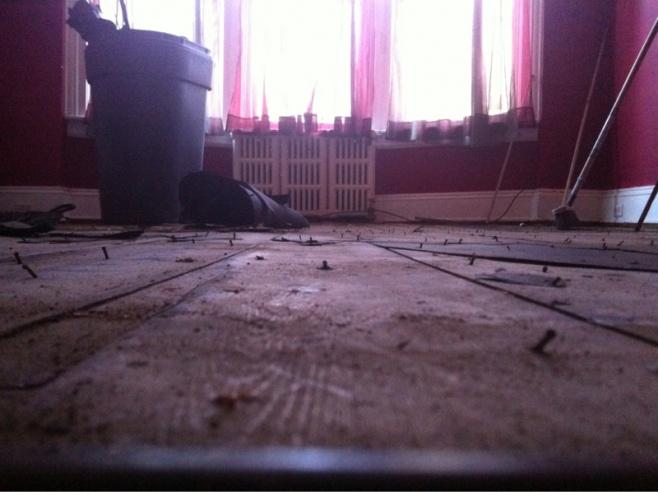 Flooring Leveling Project Help-image-351830973.jpg