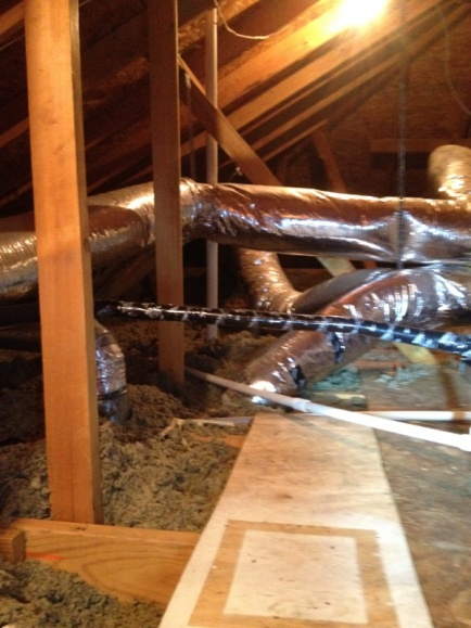 Options for my attic-image-3544948018.jpg