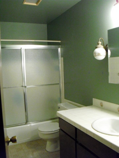 Most recent completed project: biggest bathroom-image-3560979367.jpg