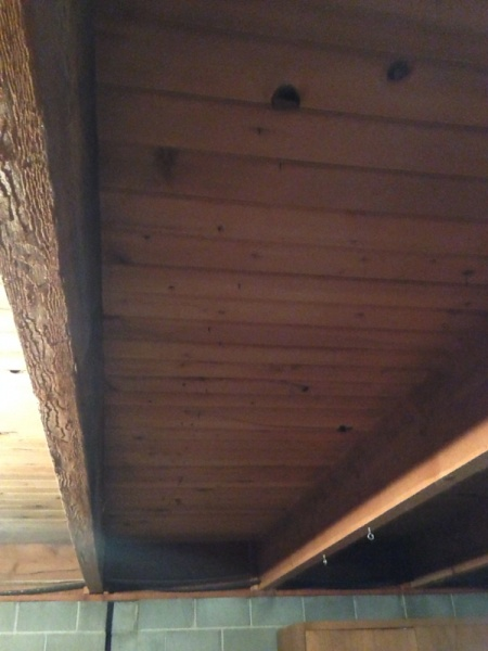 Sister joists or to add joists in between...-image-3589061699.jpg