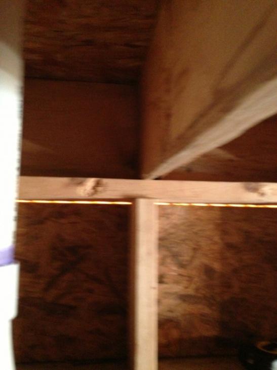 Bouncy Floor-image-3597392887.jpg