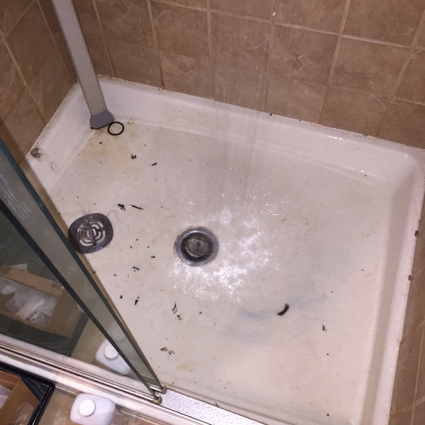 replacement of shower