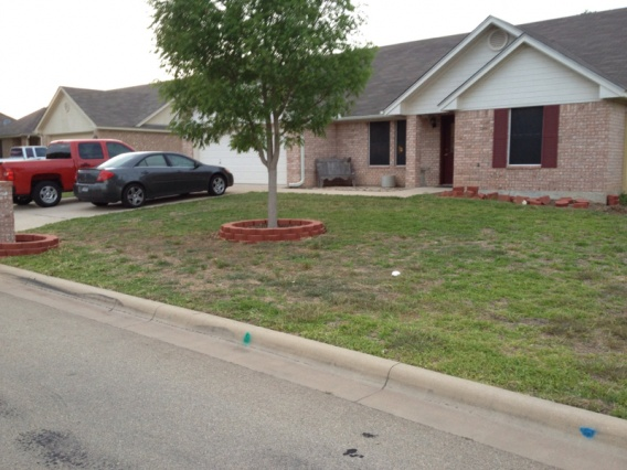 New landscaping need plant ideas..-image-3617029012.jpg
