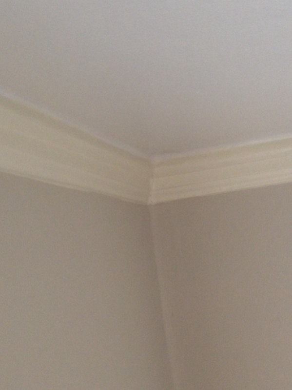Removing crown moulding from plaster-image-3796515170.jpg