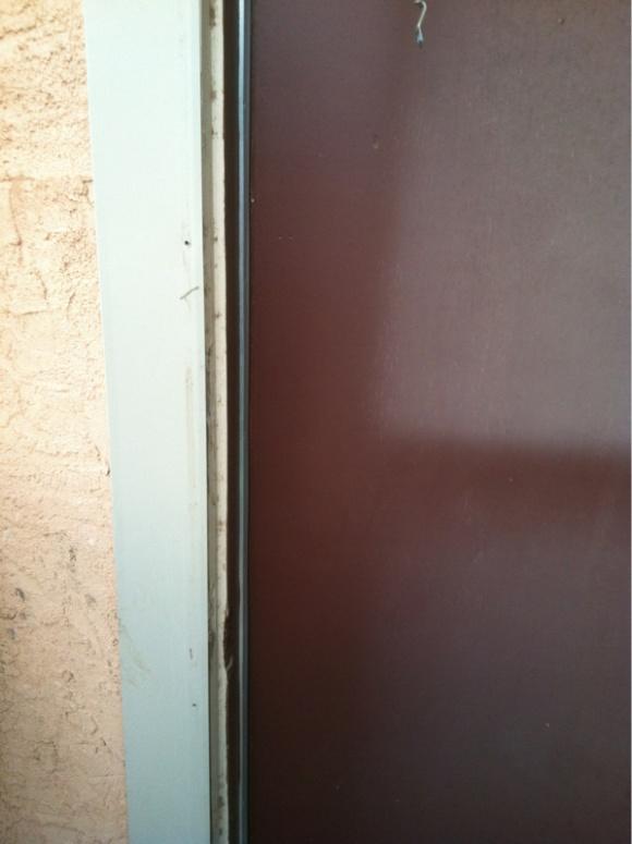 Storm door-image-3857111958.jpg