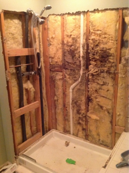 Bathroom insulation and vapor barrier insulation diy for Vapor barrier in bathroom
