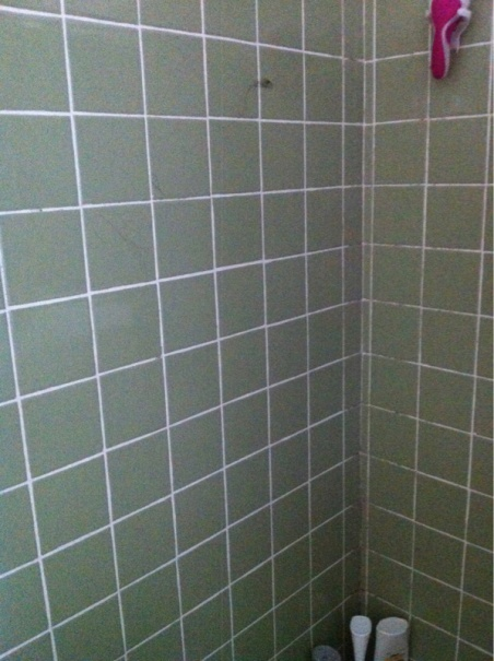 Bathroom Renovation-image-4020174625.jpg