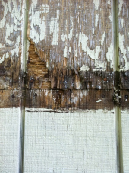 Damaged siding...repair ideas?-image-4107730406.jpg