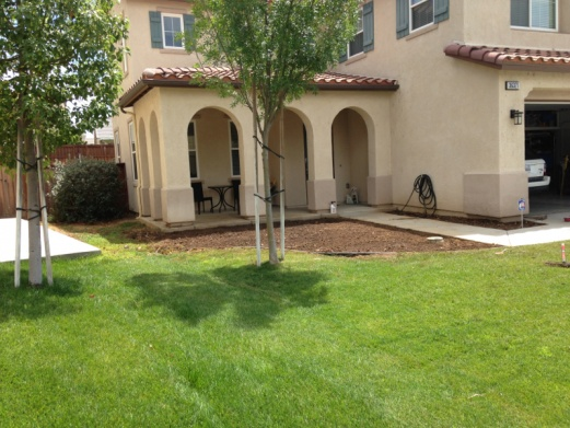 Need Suggestions w/ my front yard... *PICS*-image-4173022656.jpg