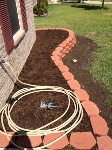 New landscaping need plant ideas..-image-452249506.jpg