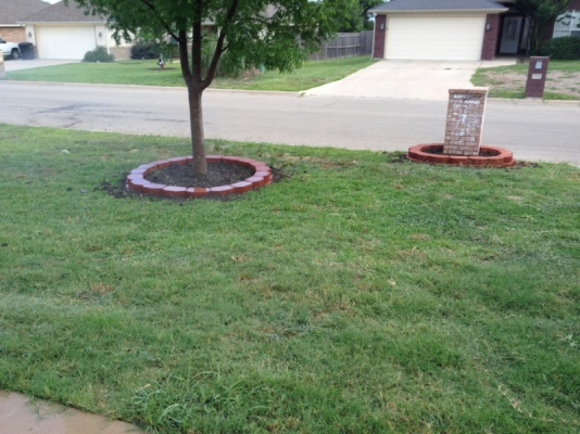 New landscaping need plant ideas..-image-499710104.jpg