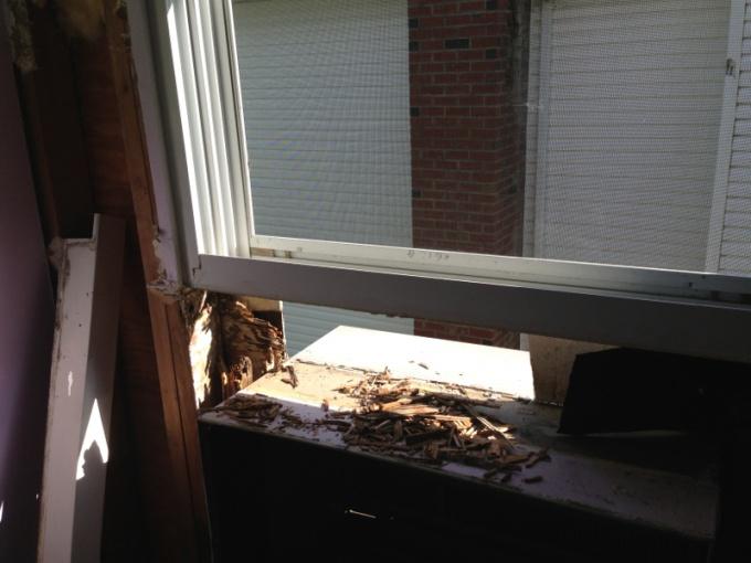Window Leak-image-810603560.jpg