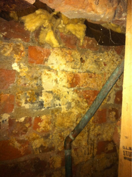 Is this mold?-image-930965260.jpg