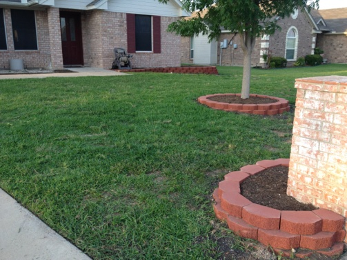 New landscaping need plant ideas..-image-967166727.jpg