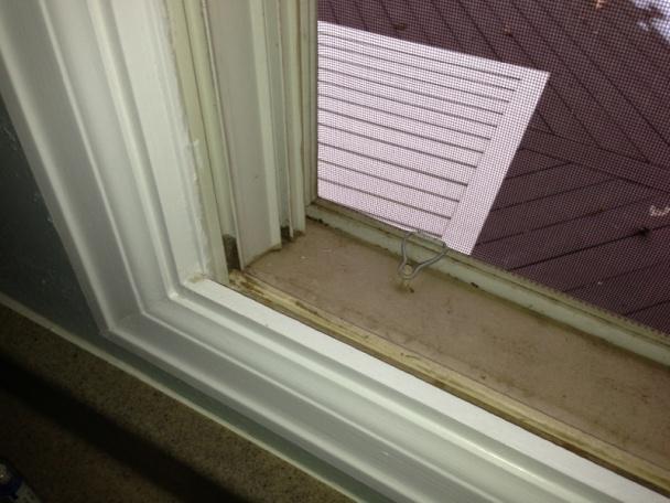 Replacing windows-image-97315258.jpg