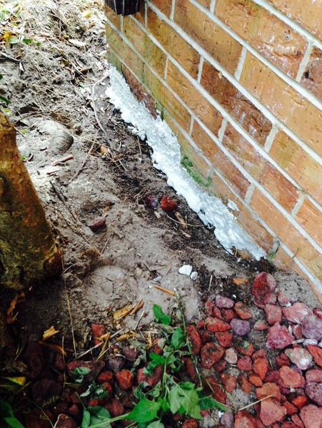 Sealing foundation from slugs entering house-image.jpg