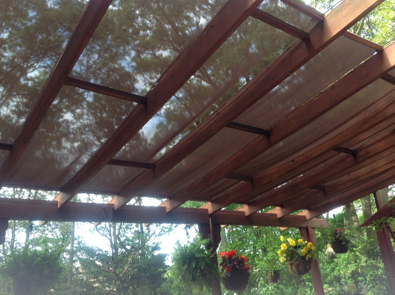 Douglas fir for pergola?-image.jpg - Douglas Fir For Pergola? - Gardening Forum - DIY Chatroom Home