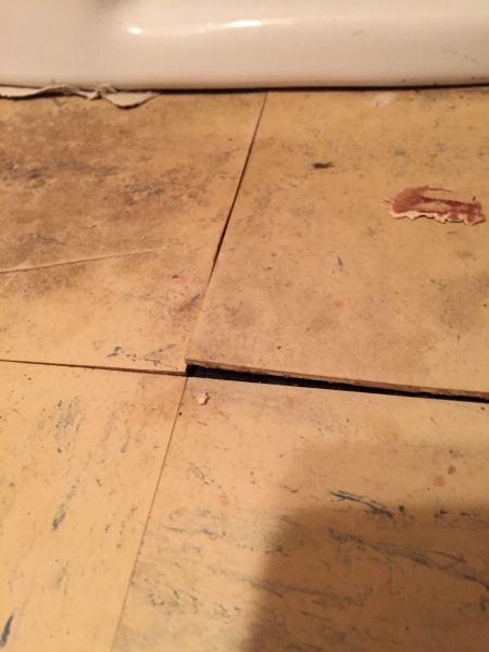 What to do with this asbestos tile?-image.jpg
