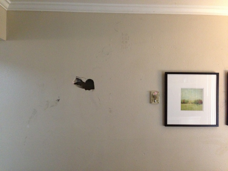Hole In The Drywall! (Need help)-image.jpg