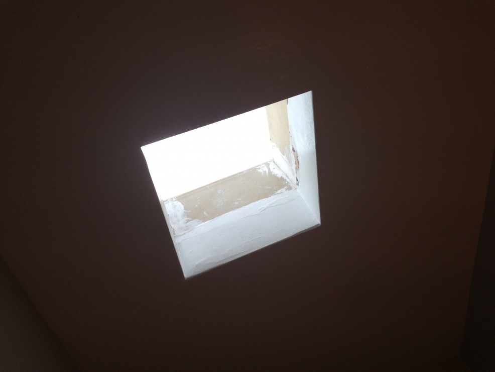 Stinky skylight and new roof-image.jpg