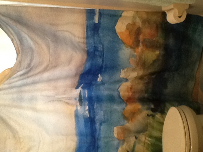 Ideas to match shower curtain-image.jpg