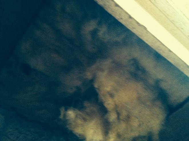 Insulation hanging below my bay window-image.jpg