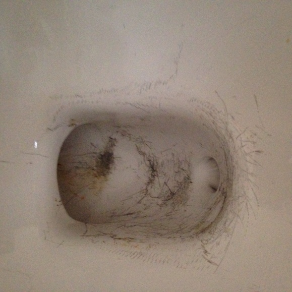 Tip for scratched toilet from snaking-image.jpg