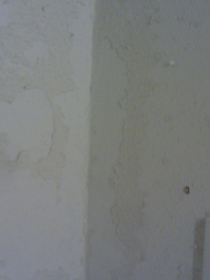 Bathroom Paint Help!-image_085.jpg