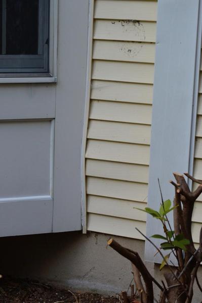 Bulge in vinyl siding-image_1441752651237.jpg