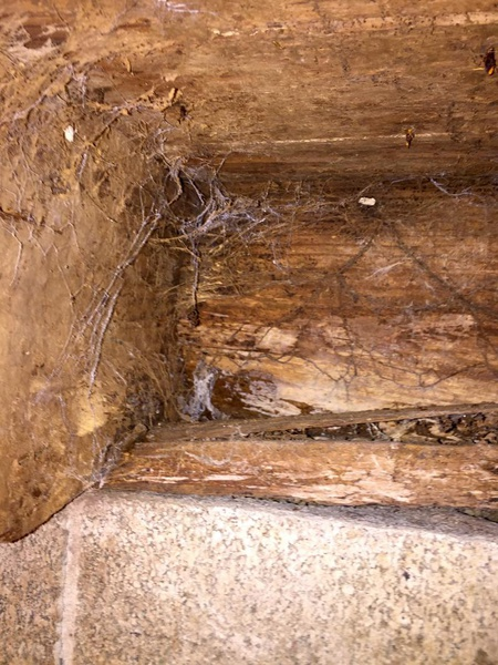 Sill floor and rim joist replacement-image_1460000676953.jpg