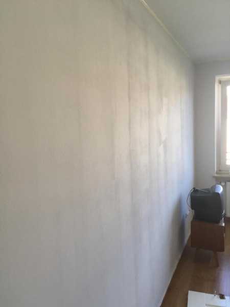 Paint And Primer >> Paint Streaks Not Going Away - Painting - DIY Chatroom ...