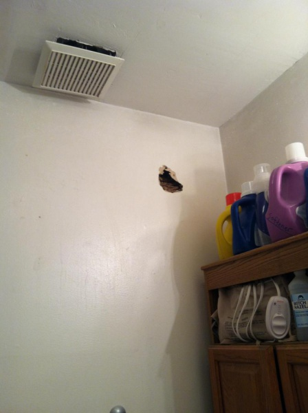 Bees nest in wall?-image_1476312417694.jpg