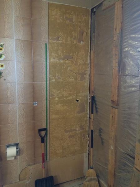 Advice on Bathroom Remodel-imageuploadedbydiy-chat1435082314.937248.jpg