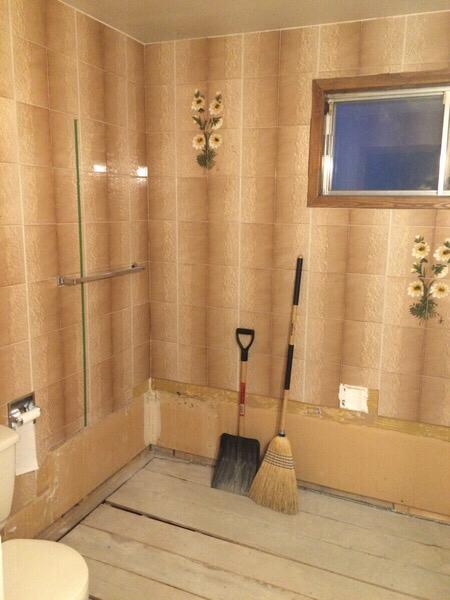 Advice on Bathroom Remodel-imageuploadedbydiy-chat1435633820.995454.jpg