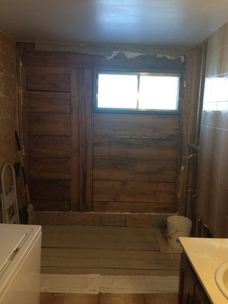 Advice on Bathroom Remodel-imageuploadedbydiy-chat1435633878.175988.jpg