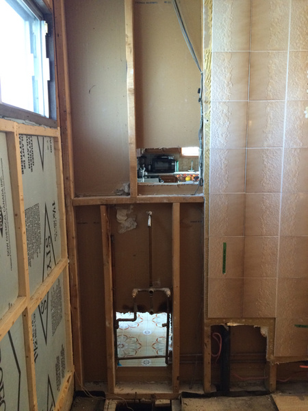 Advice on Bathroom Remodel-imageuploadedbydiy-chat1436379773.923255.jpg